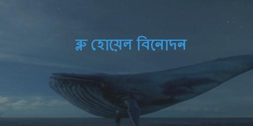ব্লু হোয়েল বিনোদন