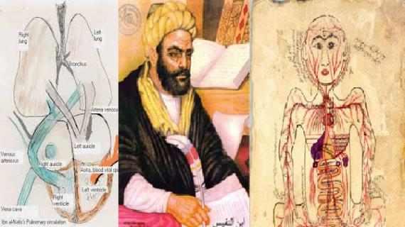 ইবনুন নাফিস: মানবদেহে বায়ু ও রক্ত সঞ্চালন ব্যবস্থার আবিষ্কারক