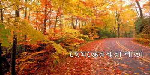 হেমন্তের ঝরা পাতা