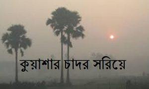 কুয়াশার চাদর সরিয়ে