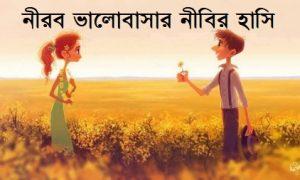 নীরব ভালোবাসার নীবির হাসি