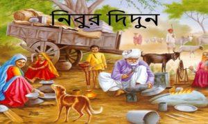 নিবুর দিদুন
