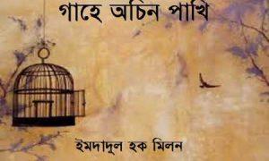 গাহে অচিন পাখি