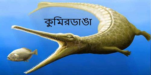 কুমিরডাঙা