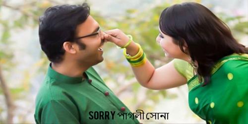 Sorry পাগলী সোনা