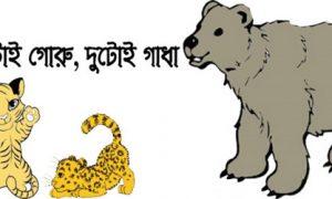 দুটোই গোরু, দুটোই গাধা