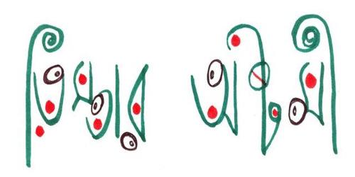 তিস্তার অষ্টমী