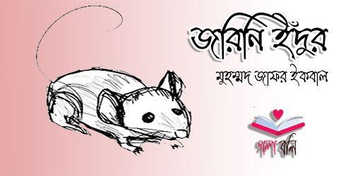 জরিনি ইঁদুর