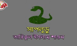 সাপলুডু