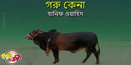 গরু কেনা